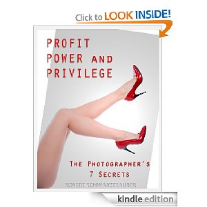 power, profit and privilege